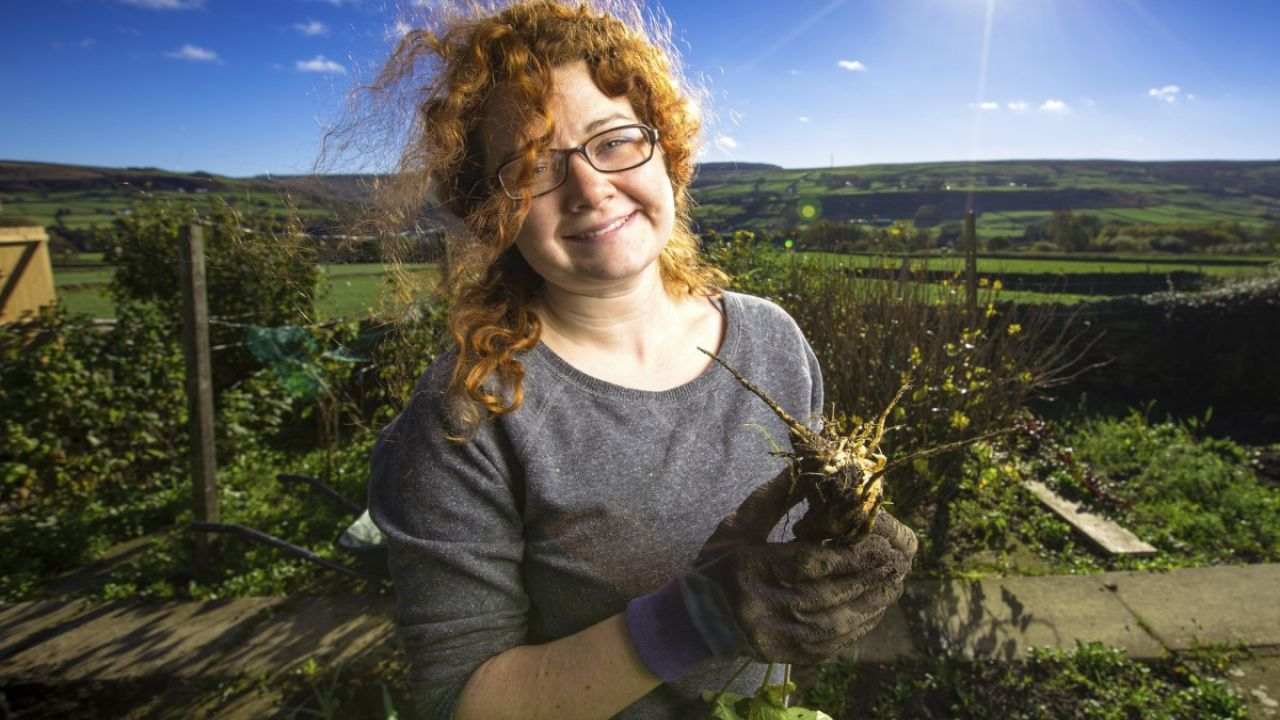 Woman holding a turnip or parsnip in a vegetable garden, Yorkshire, UK