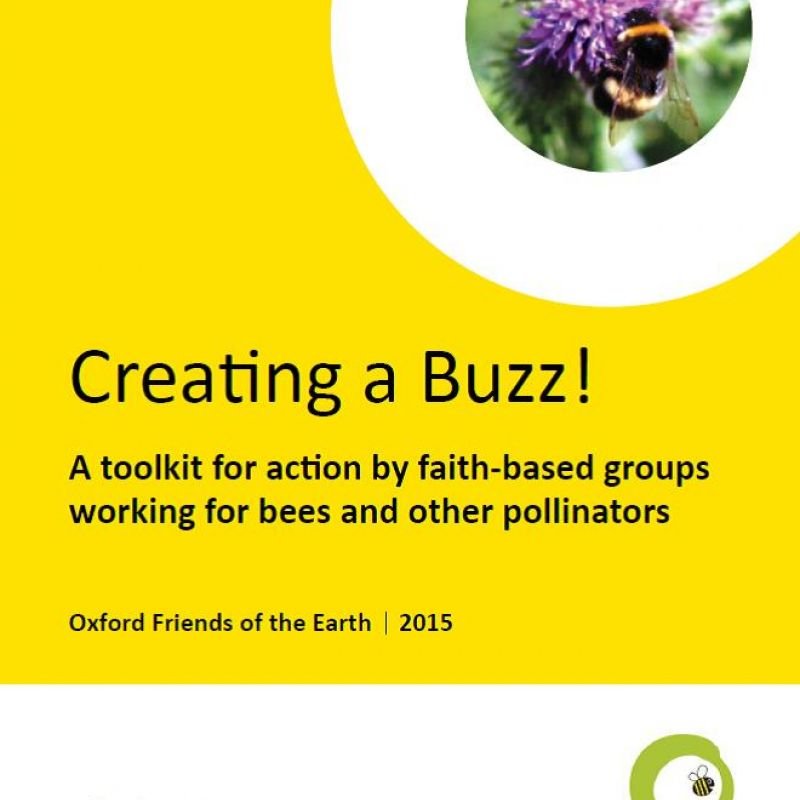 Creating a Buzz - front cover