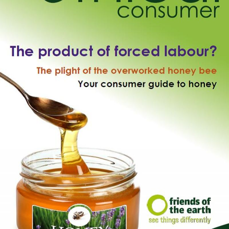 Ethical Consumer's guide to honey front page