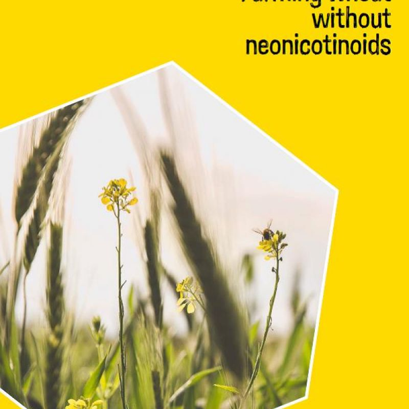 Farming wheat without neonicotinoids - front cover