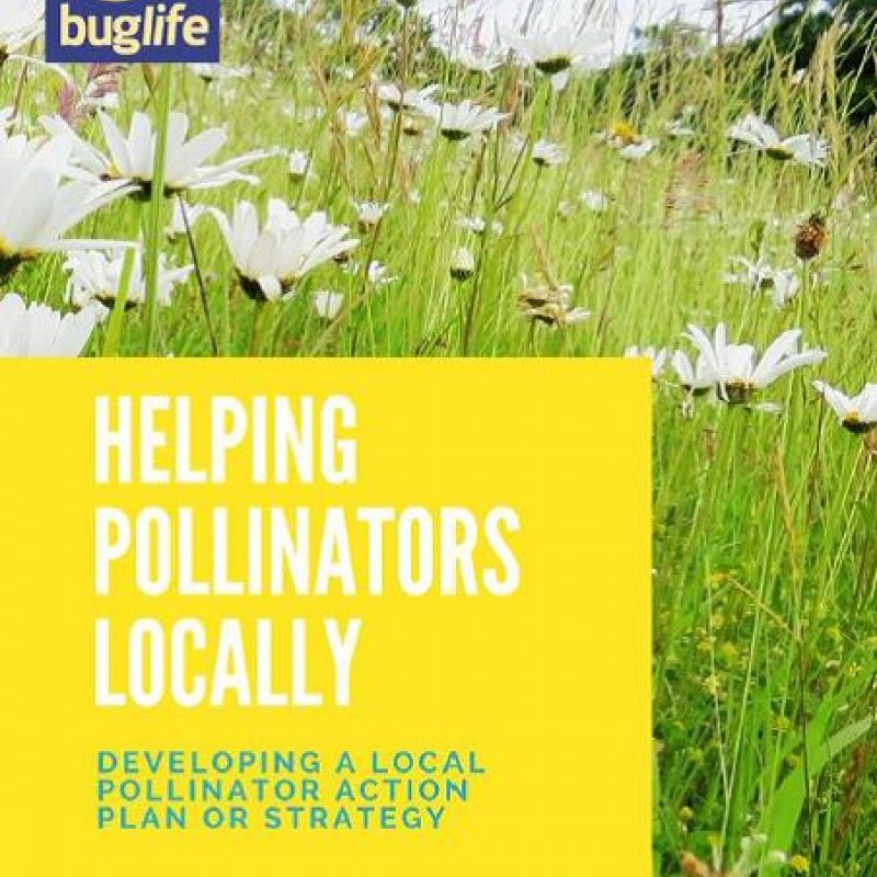 Helping pollinators locally - front cover