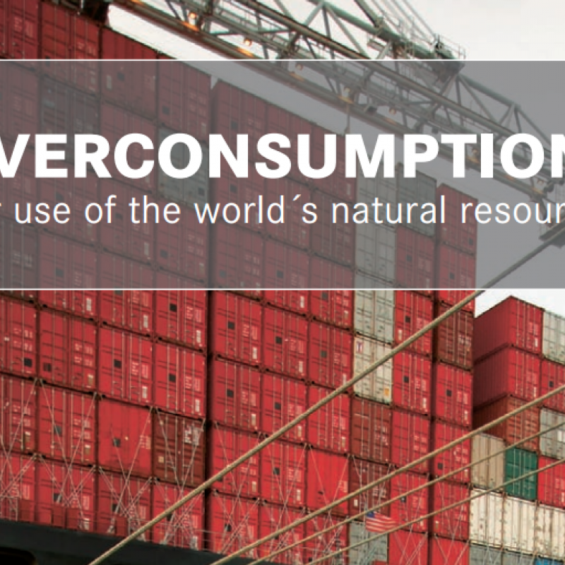 Screenshot of Overconsumption Friends of the Earth Europe report