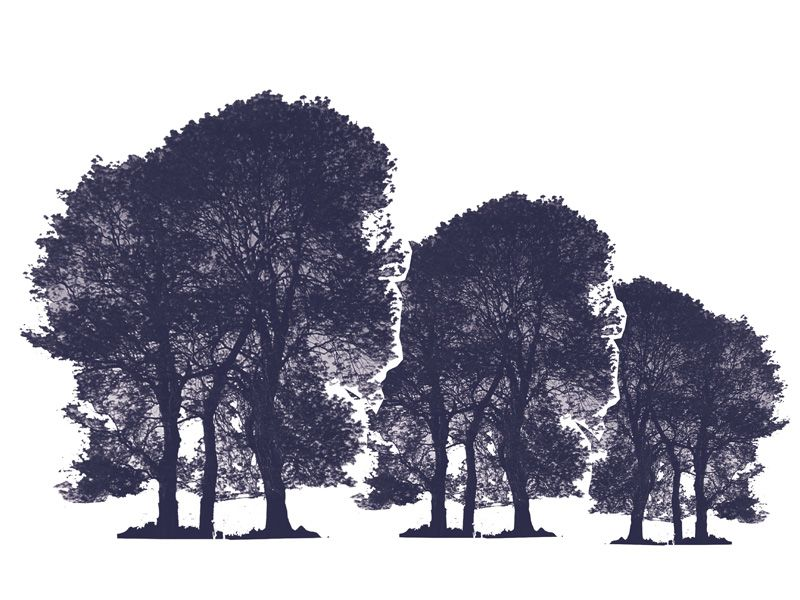 illustration of trees in black and white