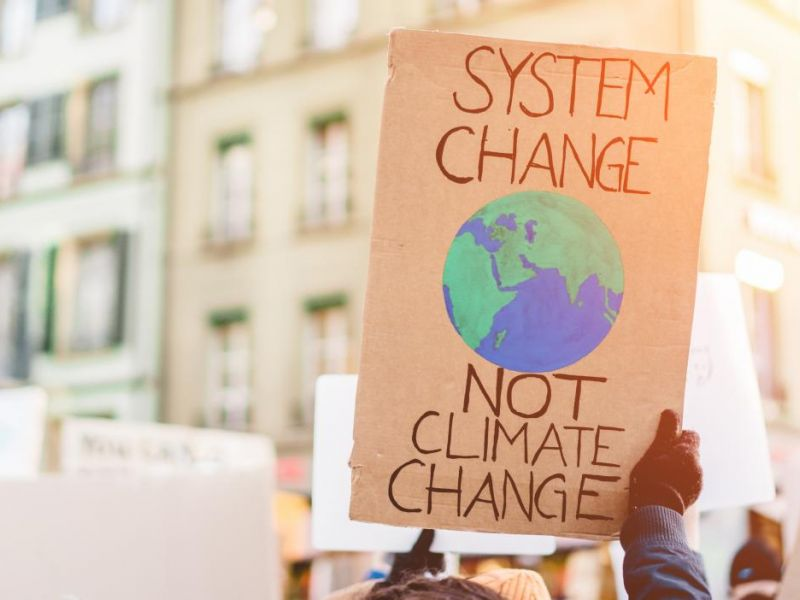 System change not climate change placard