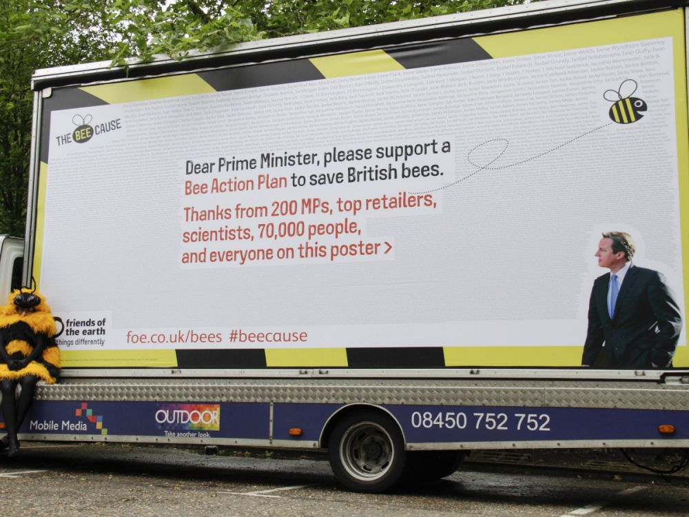 The Bee Cause billboard in Witney, Oxfordshire June 2013. .The billboard displays the names of 10,000 people who are calling on David Cameron to save British bees. Witney is David Cameron's constinuency.