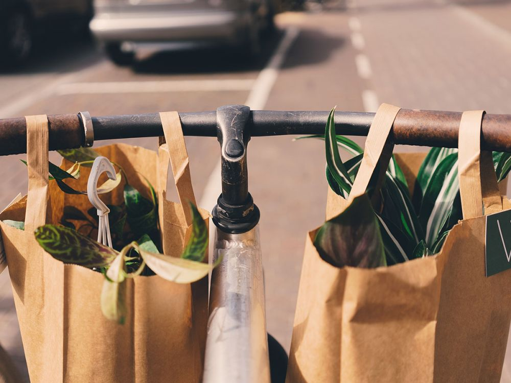 a cyclist uses two reusable paper bags instead of a plastic bag for shopping