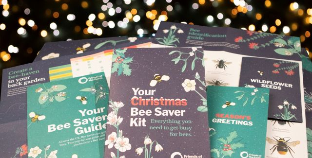 Donate £15 to help bees this Christmas. Get your Christmas Bee Saver Kit