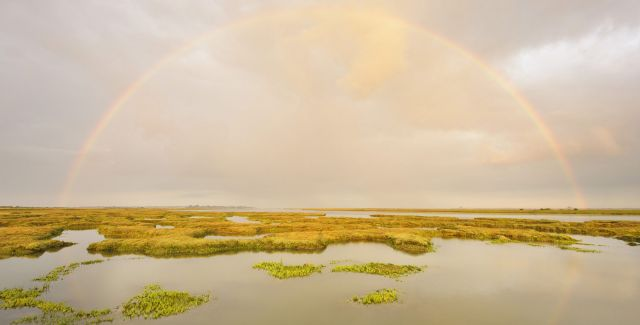 Saltmarsh, Abbotts-Hall-Farm, Essex. Water marshland and large rainbow in cloudy sky.