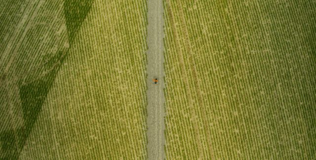 Aerial photo of planted field with track