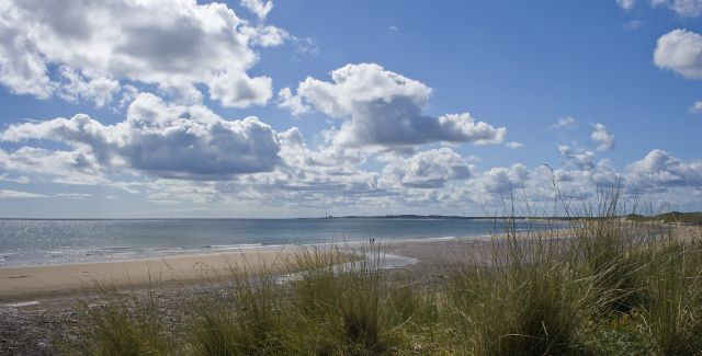 photo of Druridge Bay with dunes and grasses in foreground
