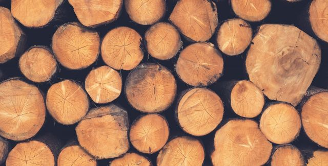 Photo of sawn timber pile